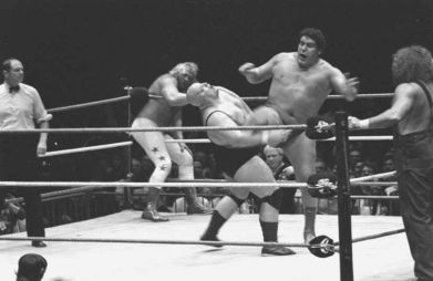 Andre the Giant, Credit: Wikimedia Commons