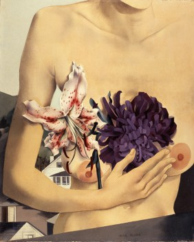 Peter Blume, Torso with Tiger Lily, 1927. Collection of Barney A. Ebsworth Art © The Educational Alliance, Inc./Estate of Peter Blume/Licensed by VAGA, New York