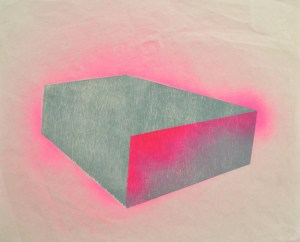 Pink Box, 2013 Woodblock relief and spray-paint Courtesy of the artist