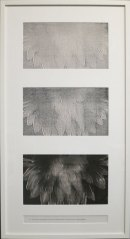 "Pati Hill, A Swan: An Opera in Nine Chapters (detail of Chapter 8), 1978, installation of thirty-two captioned black and white copier prints, framed: 38"" x 20 1⁄2"" ; Courtesy Estate of Pati Hill"