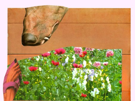 Dog, digital print on archival paper, collage with found imagery, 2013. courtesy of Snyderman-Works