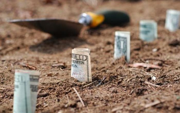 money-farm-soldi-risparmio