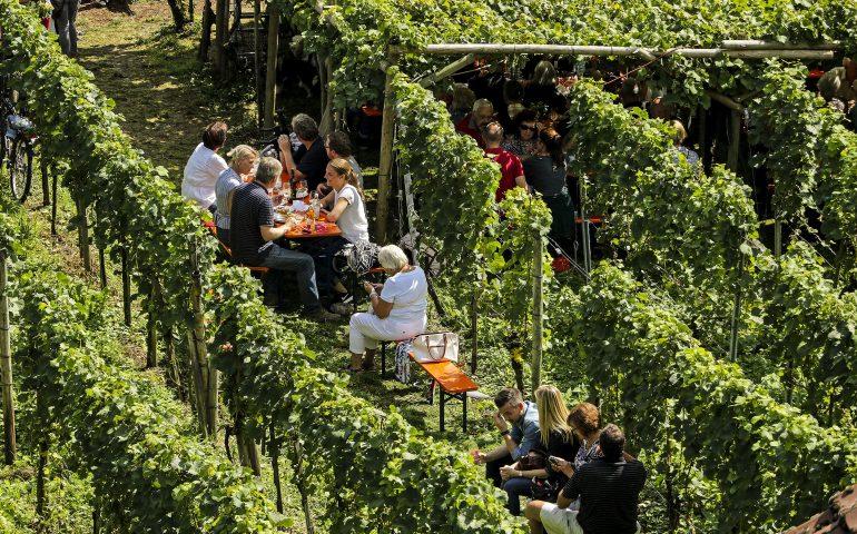 Baden Württemberg, la natura da amare e da mangiare
