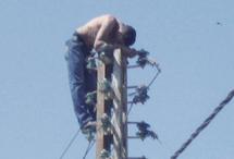Suicide - Pylone