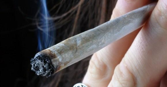 30 Mai 2013 : Bilan de saisie de cannabis