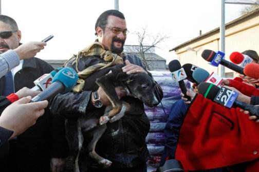 Steven Seagal a visité un abri  pour chiens à Bucarest
