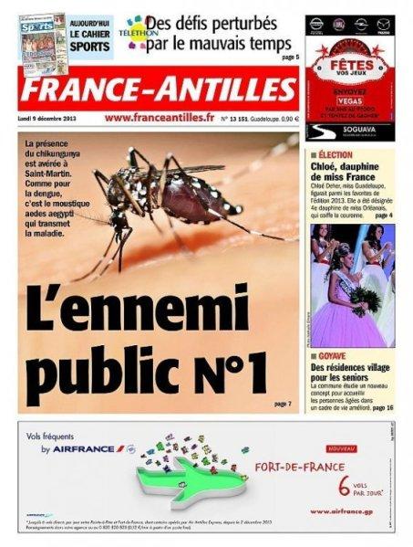 le moustique Aedes Aegypti transmetteur du virus