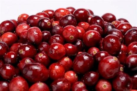 Les cranberries augmentent  l'espérence de vie