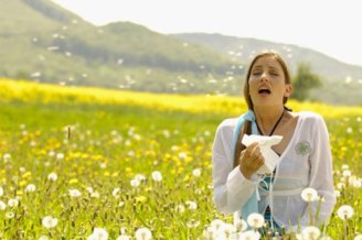 allergique aux pollens