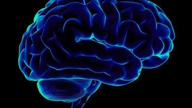 dépassé un âge le cerveau se fatigue