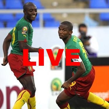 Regarder match Cameroun Côte d'Ivoire 2014 en direct et voir le replay des qualifs CAN 2015