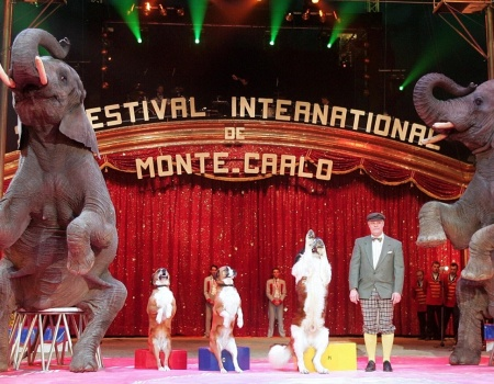 Regarder le 40e Festival international du cirque de Monte-Carlo sur France 3