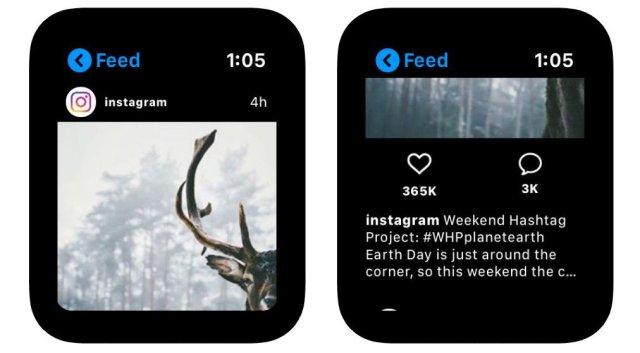 Lens app on Apple Watch