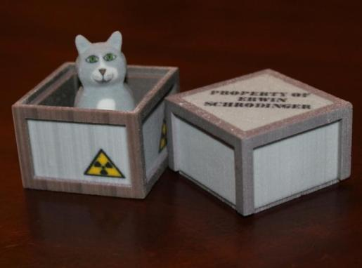 Schrödinger's Cat In The Block