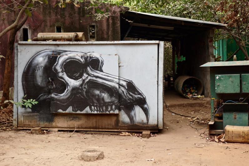 roa street art