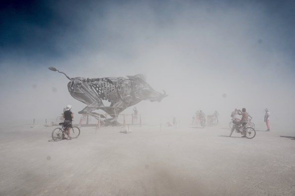 burningman15