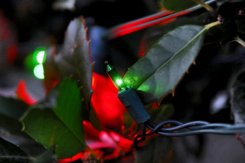 Holiday Lighting 27