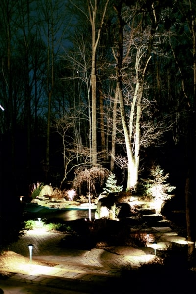 Landscape Lighting 9
