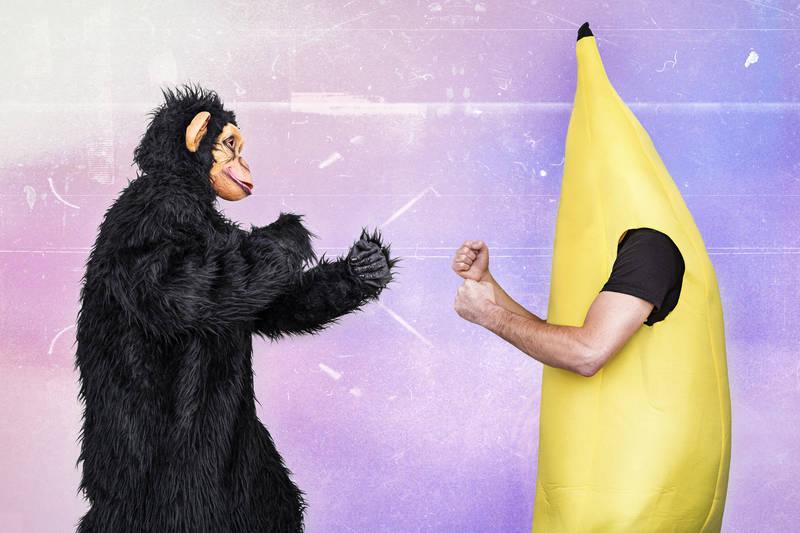 monkey vs. banana