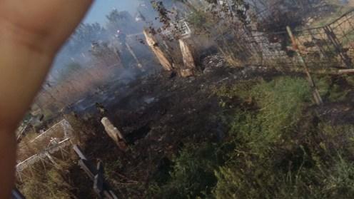 Pompierii din Babadag au intervenit pentru stingerea unui incendiu izbucnit în cimitirul din localitate. FOTO ISU Tulcea