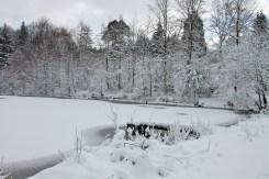 Winter 2015/2016 in Schöntal