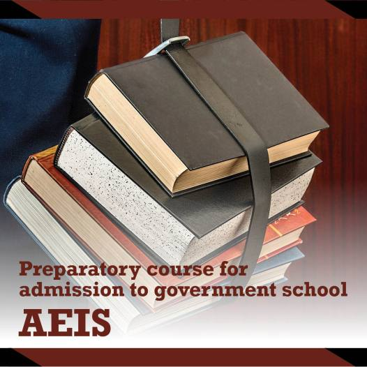Preparatory Course for Admission to Government Schools (AEIS)