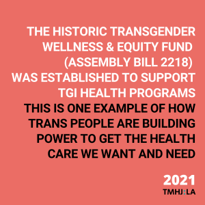 """On a pinkish-red background, white text says """"the historic transgender wellness & equity fund (assembly bill 2218) was established to support TGI health programs"""" In black text below, it says """"this is one example of how trans people are building power to get the health care we want and need"""""""