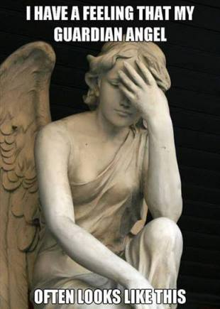 I have a feeling my guardian angel often looks like this...