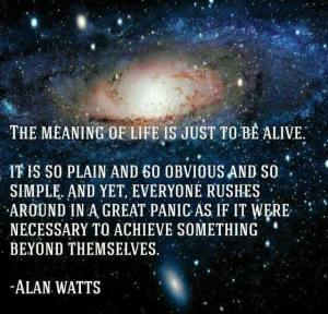 The meaning of life is just to be alive. It is so plain and so obvious and so simple. And yet, everyone rushes around in a great panic as if it were necessary to achieve something beyond themselves. - Alan Watts