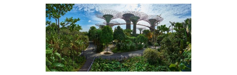 INTERNATIONAL-SINGAPOUR-g