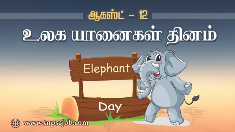 World Elephant Day in Tamil உலக யானைகள் தினம் 2020