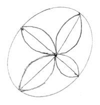 Move Center For Angled Flower