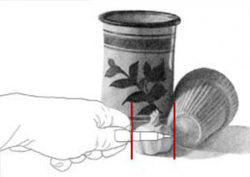 Measuring garlic with pencil. C. Rosinski