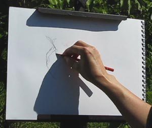 Look for edges in expressive line drawing demo C. Rosinski