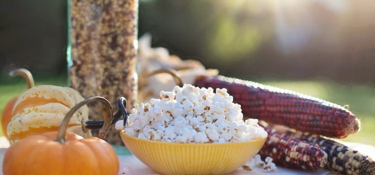 Who Invented Popcorn: Delicious Popcorn Facts and History