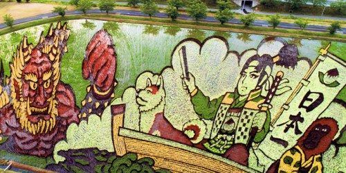 The Gigantic Rice Paddy Field Art in Inakadate, Japan