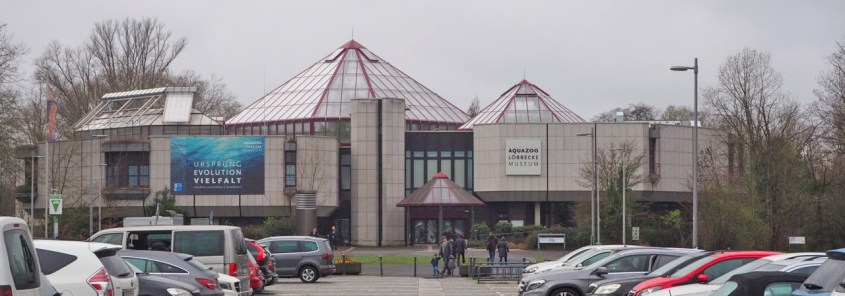 Löbbecke Museum und Aquazoo bei schlechtem Wetter