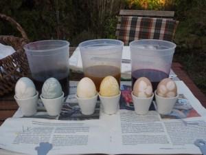 sechs Eier, je zwei blaue, gelbe und braunrosa-farbene