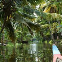 Kerala - Im Süden Indiens