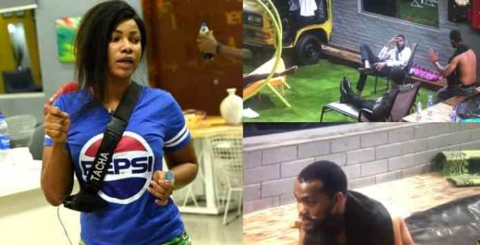 BBNaija:Your eyelashes are higher than your IQ – Joe blasts Tacha (video)