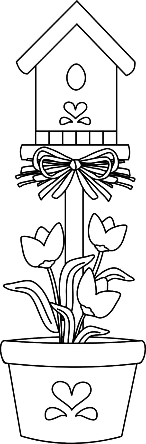 bird house planted in pot coloring pages  best place to color