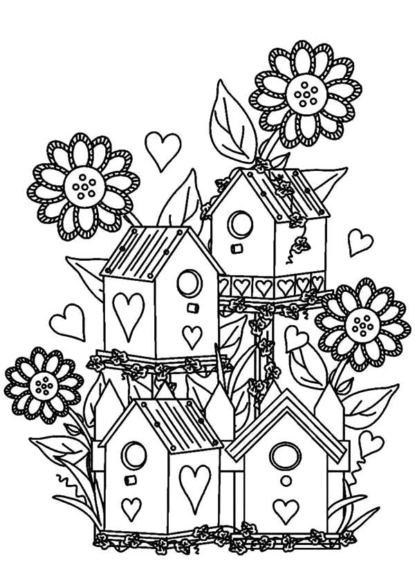 Bird House At Flower Garden Coloring Pages Best Place To