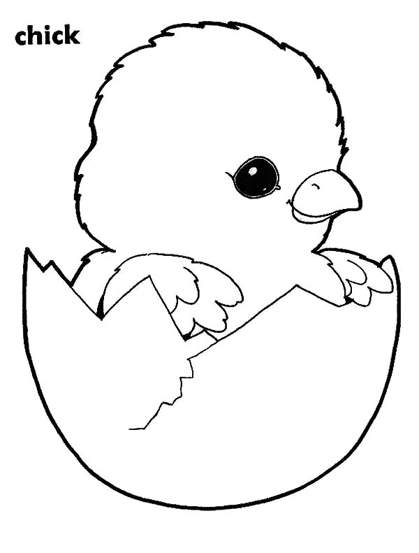chick hatching from easter egg coloring pages  best place