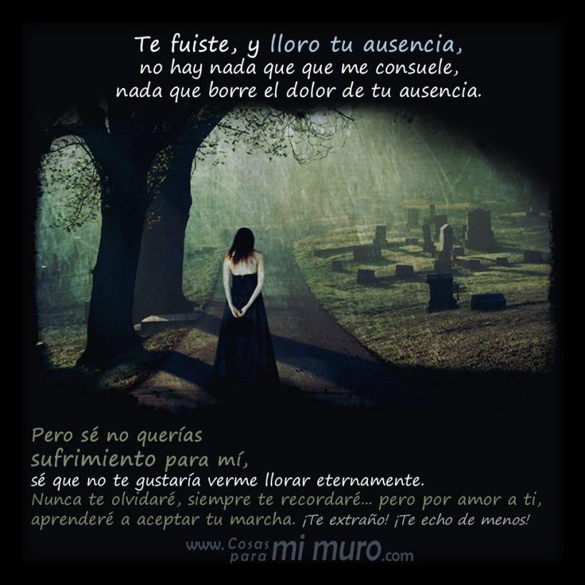 Con la muerte te fuiste y lloro tu ausencia