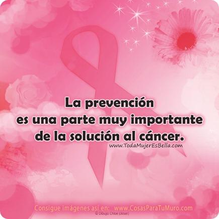 Prevención... como solución al cáncer.