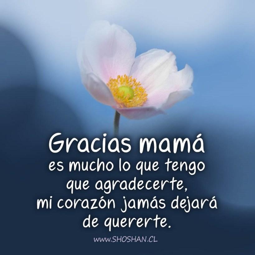 Carta para mamá