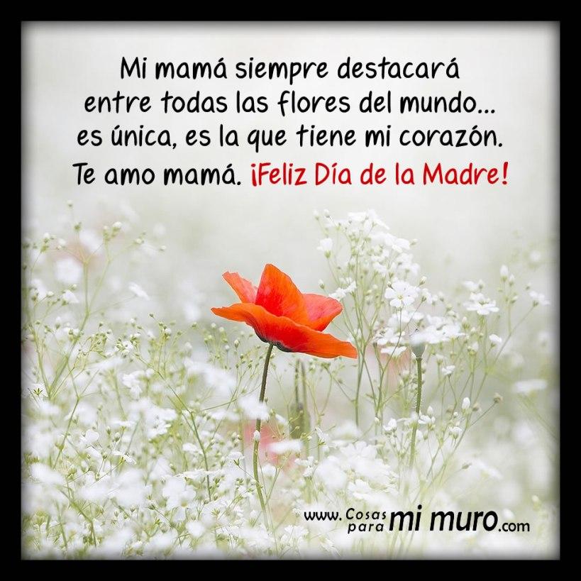 Mamá, tienes mi corazón, feliz Día de la Madre