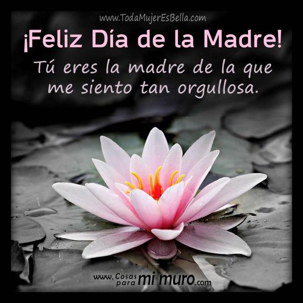 Feliz Día de la madre, estoy orgullosa de ti