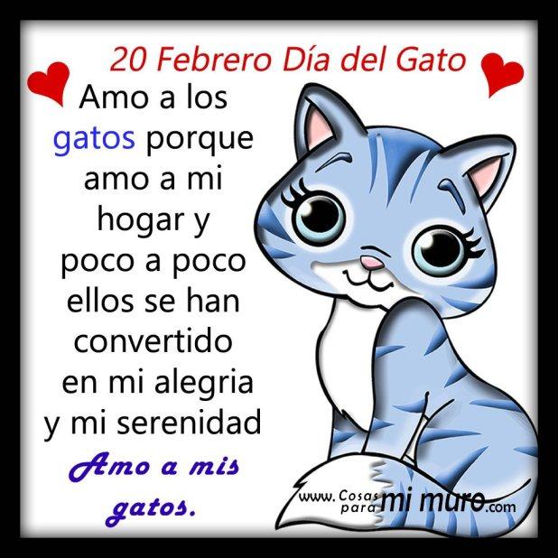 20 De Febrero, Día del Gato...
