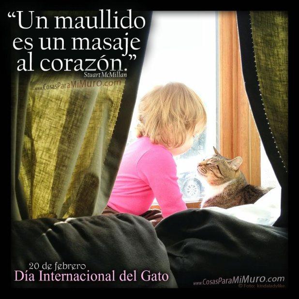 Imagen para el día del gato